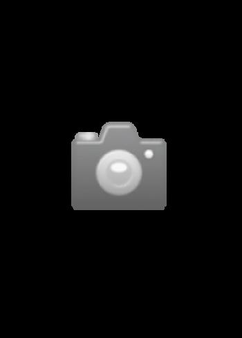 BN0106, Braun, Prestige 42x37mm, Silver, Rubber Strap